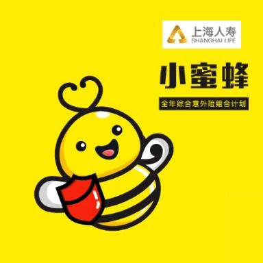 小蜜蜂全年综合意外保险  典藏款
